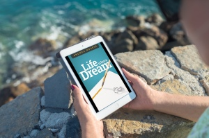 indie books life is but a dream andrea nourse